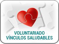 Voluntariado Vínculos Saludables